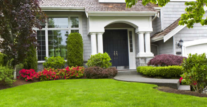 Our Landscaping Services In Palm Harbor Fl Include